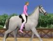 3D At Koşusu oyununu oyna