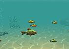 Balık Yeme oyununu oyna
