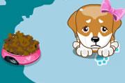 Köpek Besleme oyununu oyna